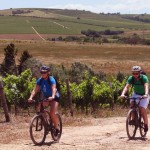 BikesnWines-Cape-Town-Bicycle-Tours